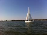Carlyle Lake 2012