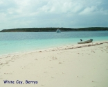 At Fowl Cay, Berrys