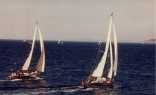 Racing In Port Townsend Bay