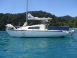 Summer Cruising Abel Tasman