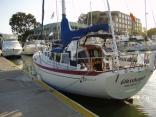Islander Freeport 36