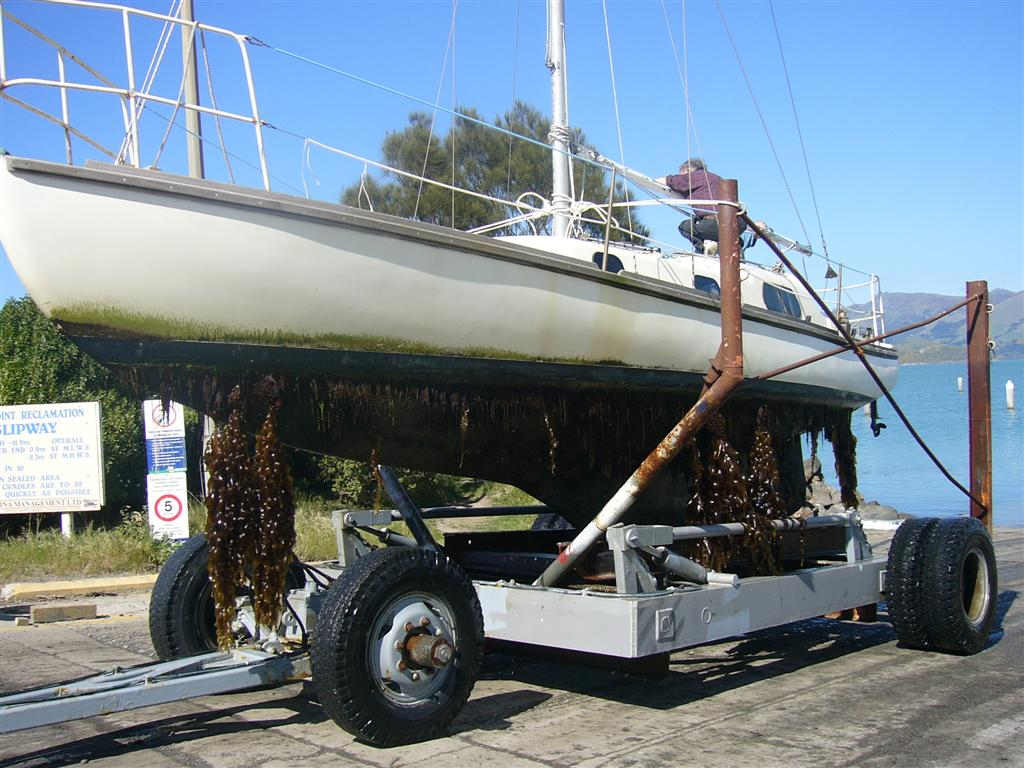 1st fibreglass boat in nz