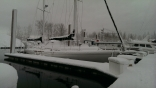 Portland January '17 Snow Storm