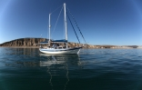 Journey- Islander Freeport 41