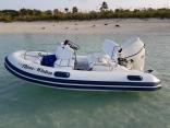 Bahamas Allan Cay Leaf Cay Iguanas Exuma Cays