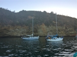 Santa Cruz Island Cruising.