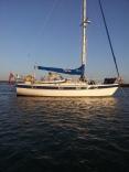 Hr352 Based South Coast Uk