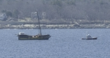 Lianas Ransom Being Towed Into Gloucester