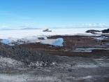 Antarctic Marina