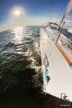 Sailing In Charleston