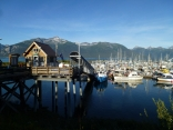 Haines Alaska Experience