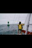 Sailing In Portland
