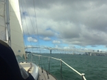 Sailing In Nz