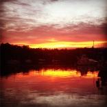 Sunrise At Herald Island, Auckland, Nz
