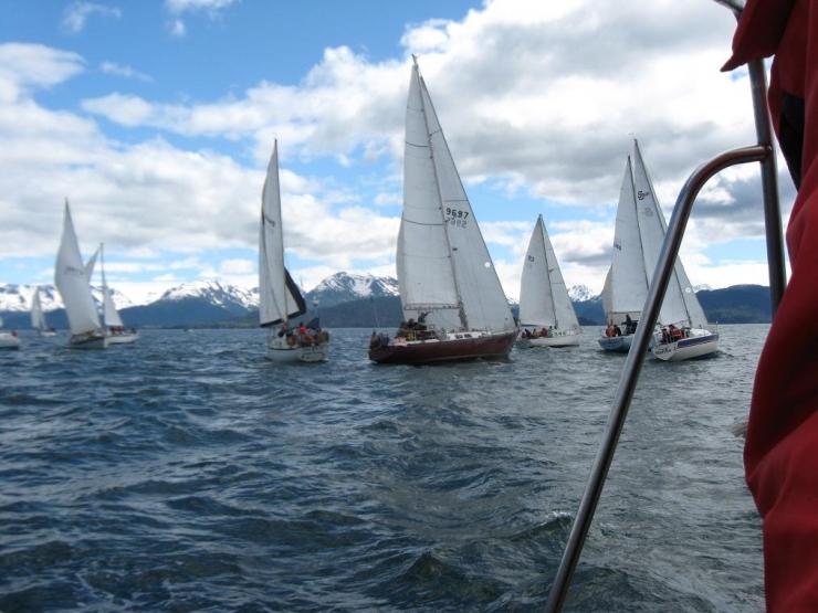 Regatta, Kachemak Bay, Alaska