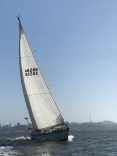 S F Bay Cruising