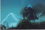 Unterwater Work