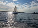 Sailing In Tampa Bay