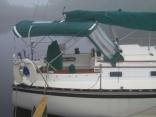 foggy morning in north florida