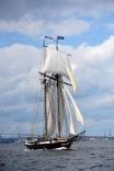 Tall Ship Harbor Cup Race