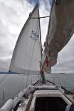 Genoa deployed in SF Bay