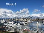 Week 4 Overlooking The Marina