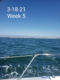 Week #5 Of Asa101