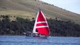 Archer On The Derwent River Tasmania