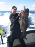 Blue Eye Cod From Browns Mtn Sydney Australia