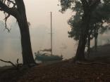 bush fires australia