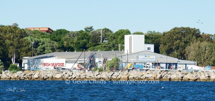 Iluka Harbour Fishing Co-op.