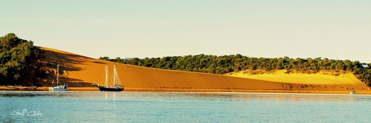Yellow Patch - Island Beach.