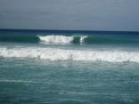 South Shore Surf
