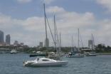 Visiting Yachts, Blackwattle Bay