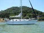 Love in Vane at anchor