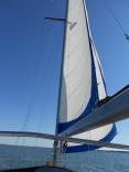 Chesapeake Bay Ahead