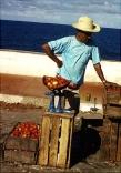 Tomato Man, Baracoa Cuba