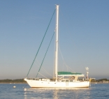Airielle - Custom Finch 46