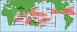 7 Hurricane Basins