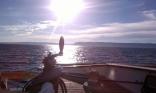 Wbird Sailin2