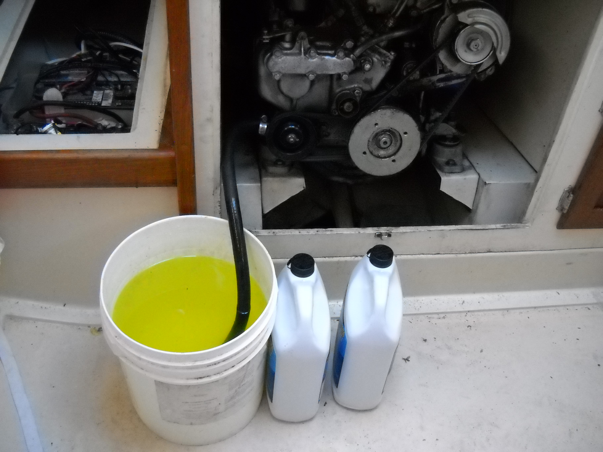 Antifreeze Flush Time Of Year
