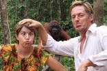 Orangutans. Well, One, Plus 2 Monkeys!