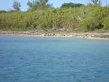 Hatchet Bay Pond