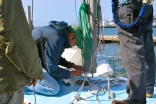 Rewiring The Mast Connection