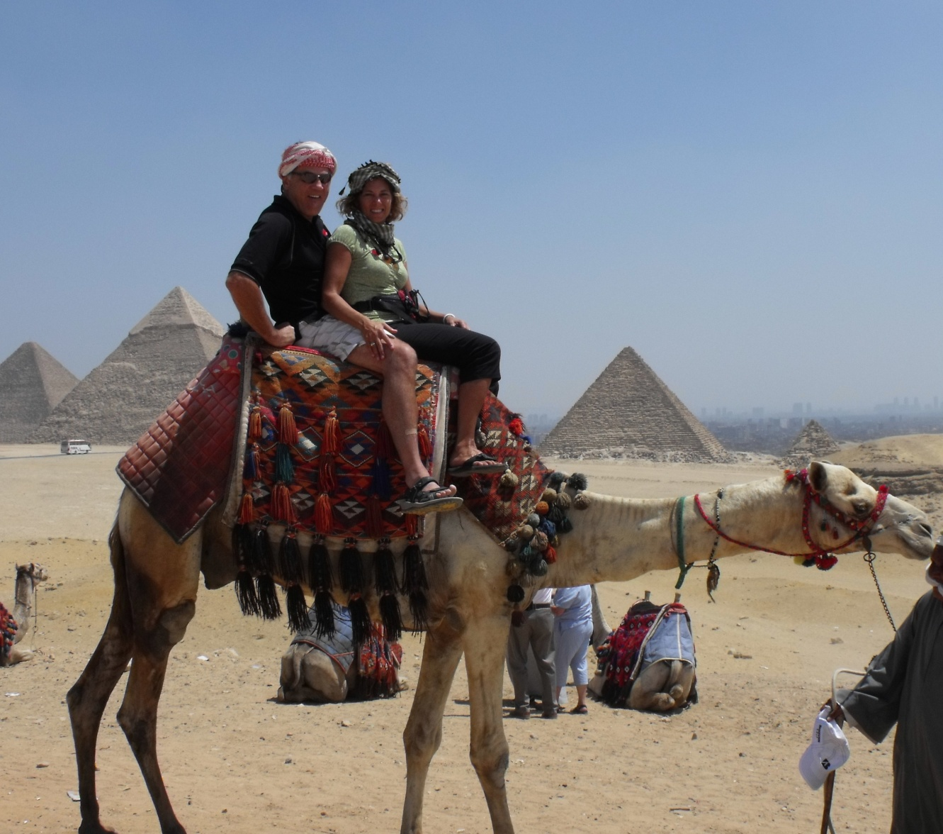 Click image for larger version  Name:camel.jpg Views:156 Size:416.3 KB ID:10131
