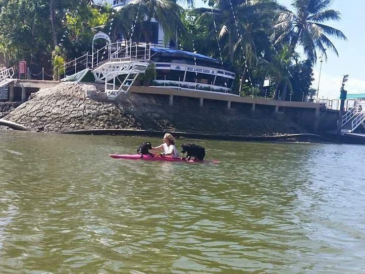 Click image for larger version  Name:kayak dogs.jpg Views:110 Size:98.7 KB ID:101585
