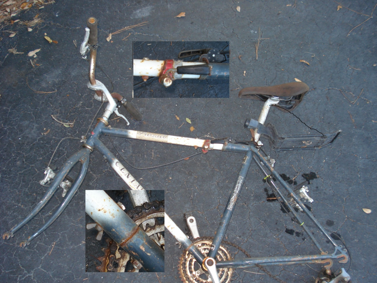 Click image for larger version  Name:first fold bike DSC03489a.jpg Views:172 Size:435.2 KB ID:102392
