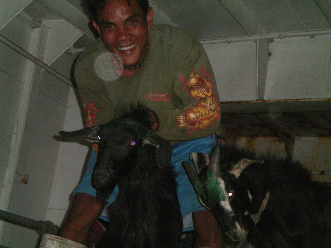 Click image for larger version  Name:Goat Boy.jpg Views:66 Size:420.8 KB ID:10421