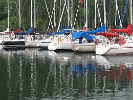 Click image for larger version  Name:Highland Y.C. Swans.jpg Views:196 Size:466.3 KB ID:104244