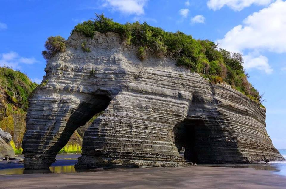 Click image for larger version  Name:Natural rock Elephant 1.jpg Views:176 Size:101.3 KB ID:104845